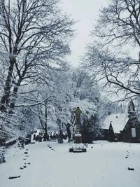 Picture of a Snow Scene in Yorkshire