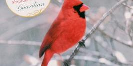 Cover Detail of A Redbird Christmas showing a Red cardinal Bird in the snow