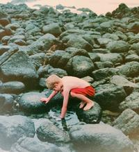 Cover Detail from Coming Home showing a child picking up stones on the beach