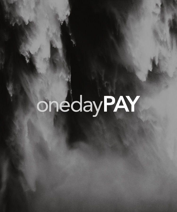 onedaypay