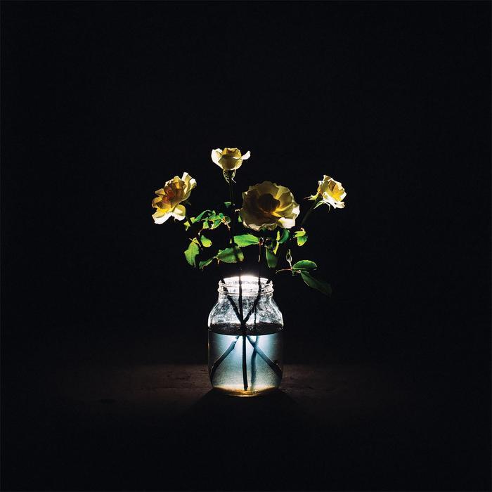Album - Billy Strings - Renewal