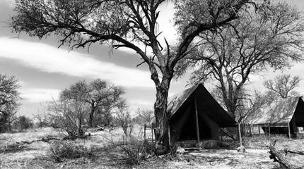 Explorer Camps