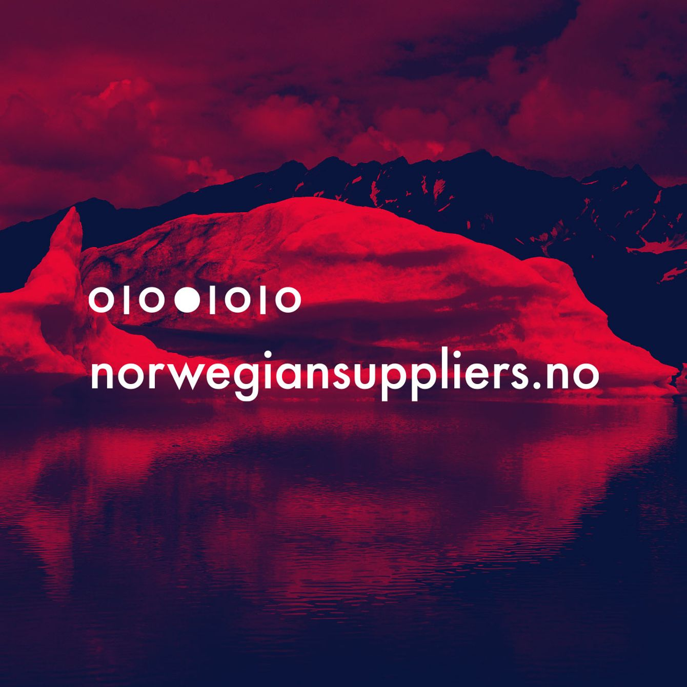 Skjermdump  av Norwegiansuppliers.no