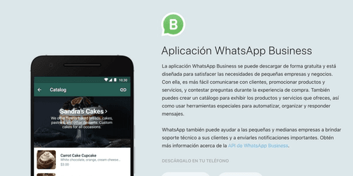 Cover for WhatsApp Business: Funcionalidades clave