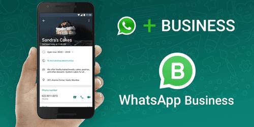 Cover for WhatsApp Business: Primeros pasos