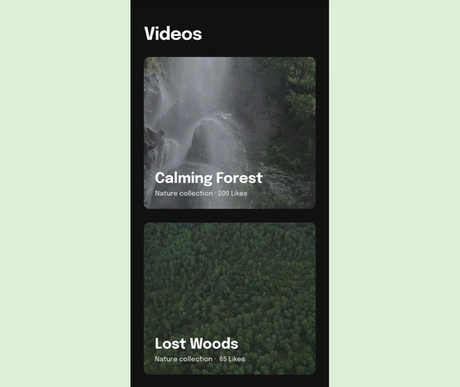 Video player preview.