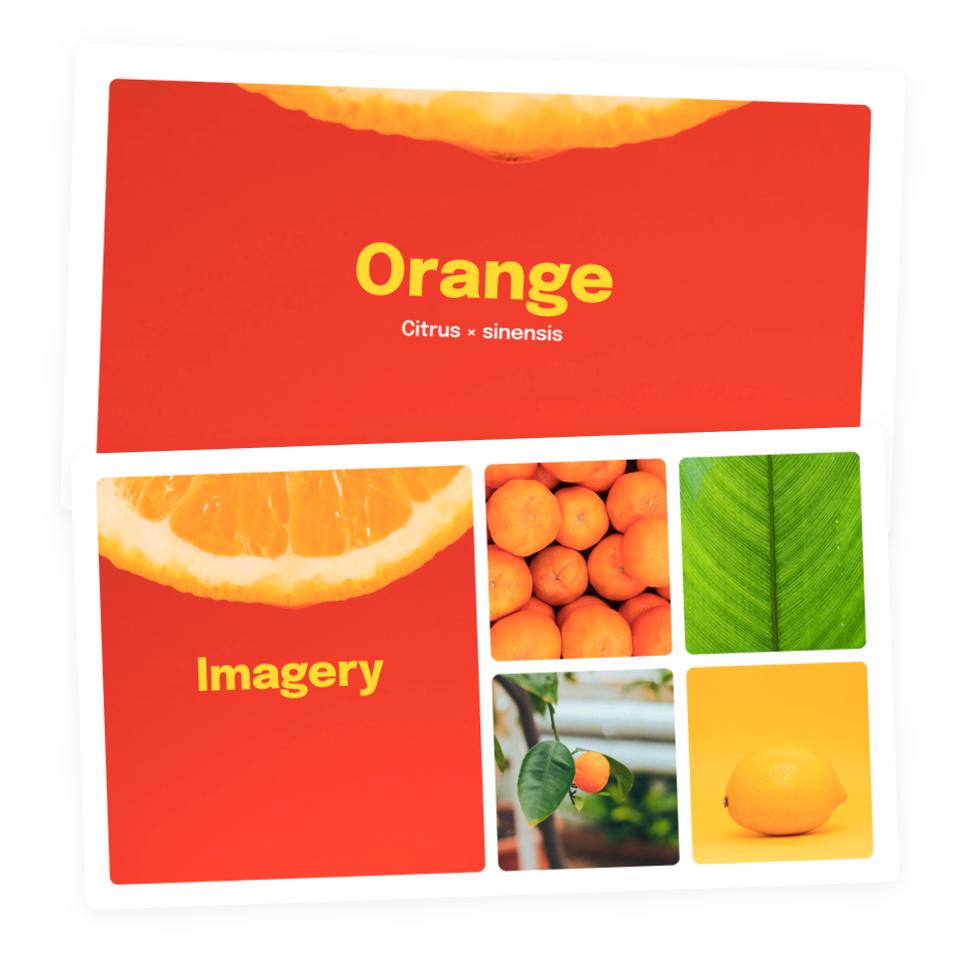 Branding moodboards