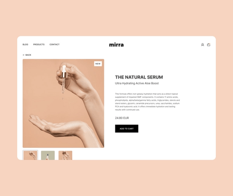 Ecommerce preview.