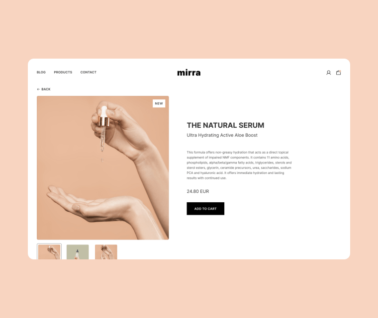Template preview of Ecommerce