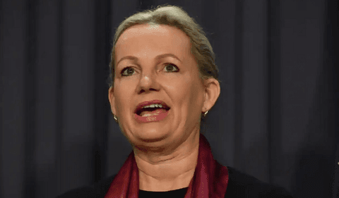 Environment minister rules huge renewable energy hub in WA 'clearly unacceptable'