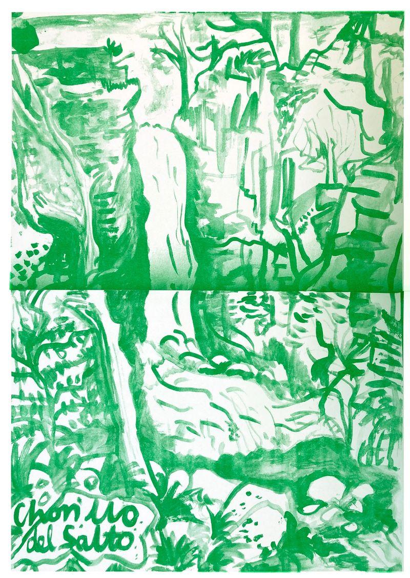 Anna McCarthy, Chorillo del Salto, 2019, risograph, 42 × 30 cm, edition: 10