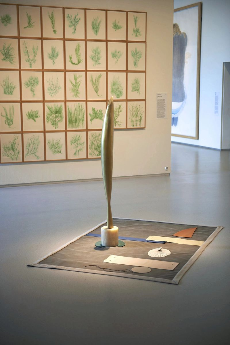Installation view, 2014, courtesy the artist and Cobra Museum Amstelveen