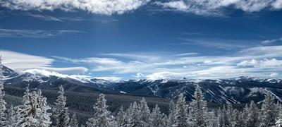 Snow covered mountains and trees against a brilliant blue sky.