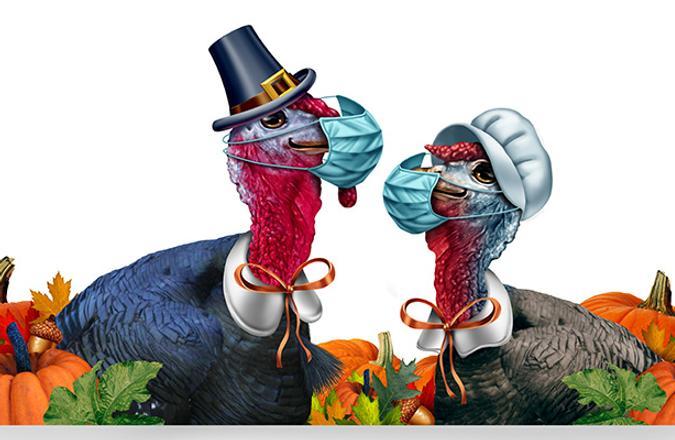 Turkeys wearing covid masks