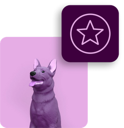 image-dog-liability-premium