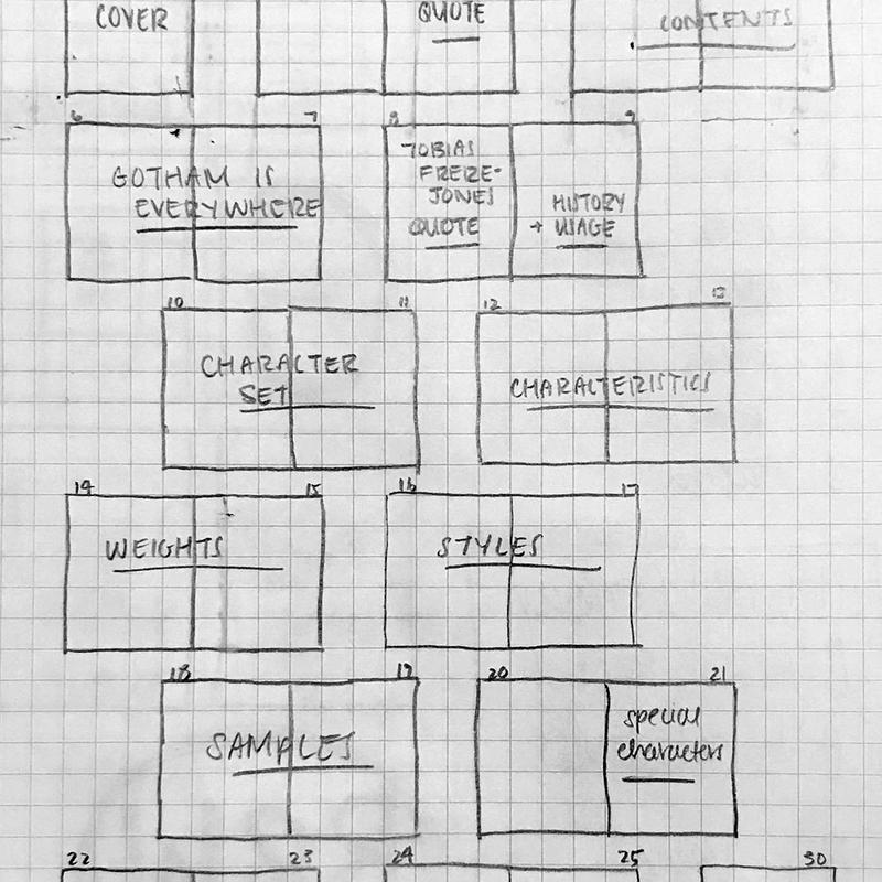 315 P4 Jung: Gotham Specimen notes 2