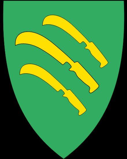 Vik kommune