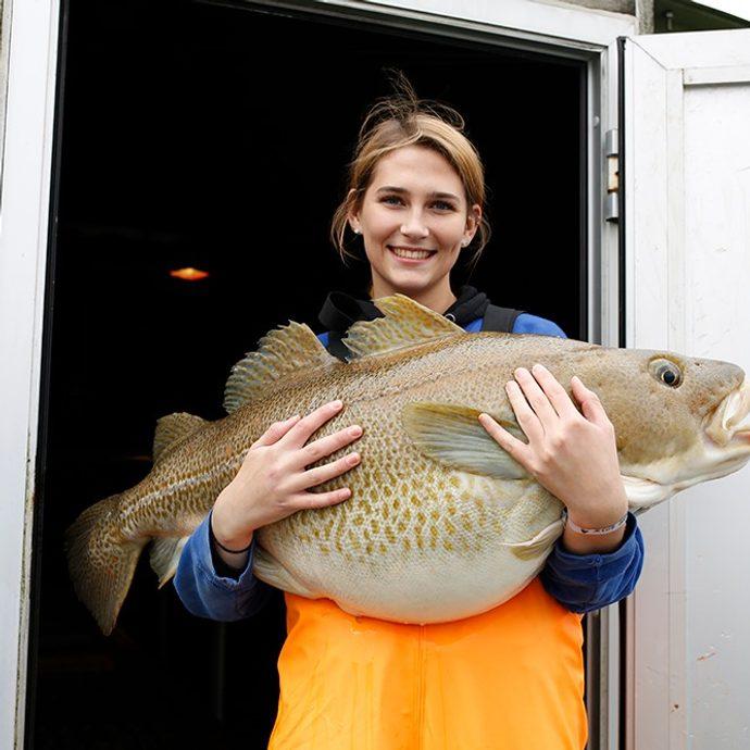 Fiske i Vestland