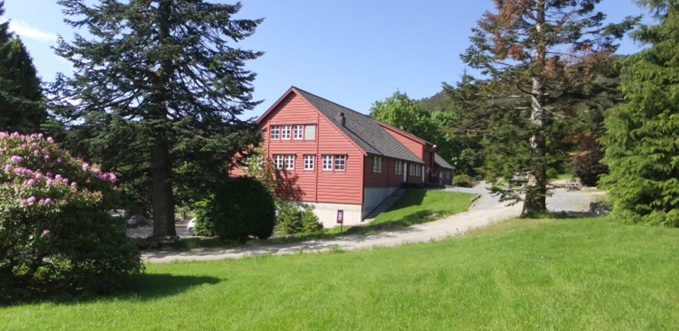 Sogn og Fjordane Skogselskap Hovedbilde