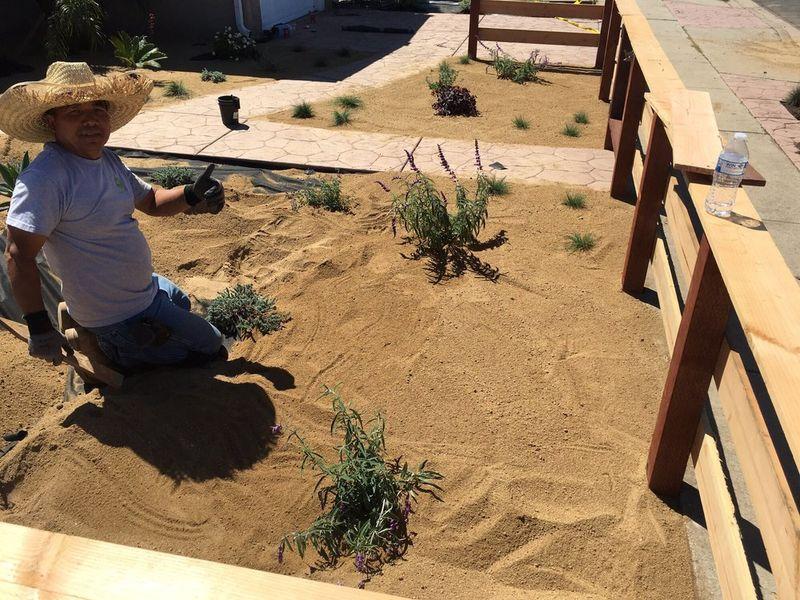 sand calvin
