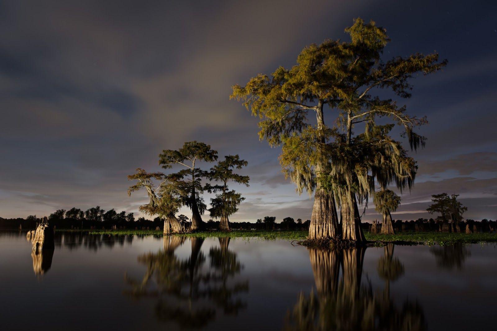 fighting the Bayou Bridge Pipeline in southern Louisiana