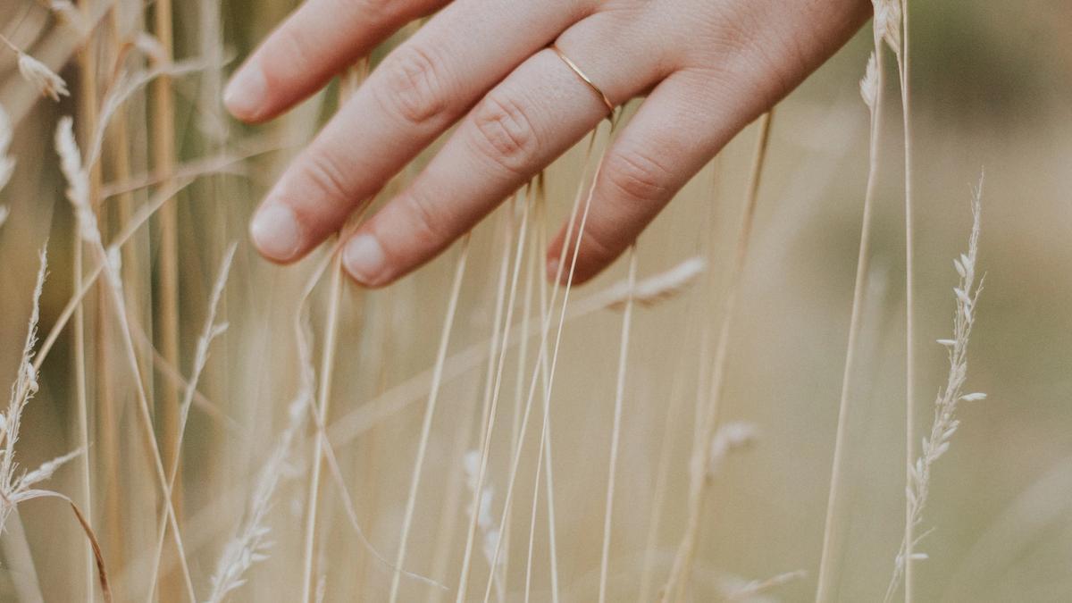 person fører hånden mellom strået
