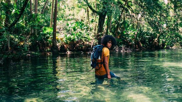 en person går i en elv i Amazonas regnskogen
