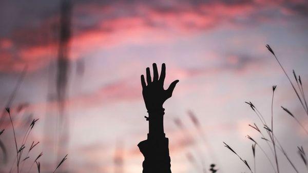 En rosafarget himmel som bakgrunn. En hand stikker opp midt i bildet med strå på siden. Illustrasjonsbilde tatt av Bryan Minear fra Unsplash