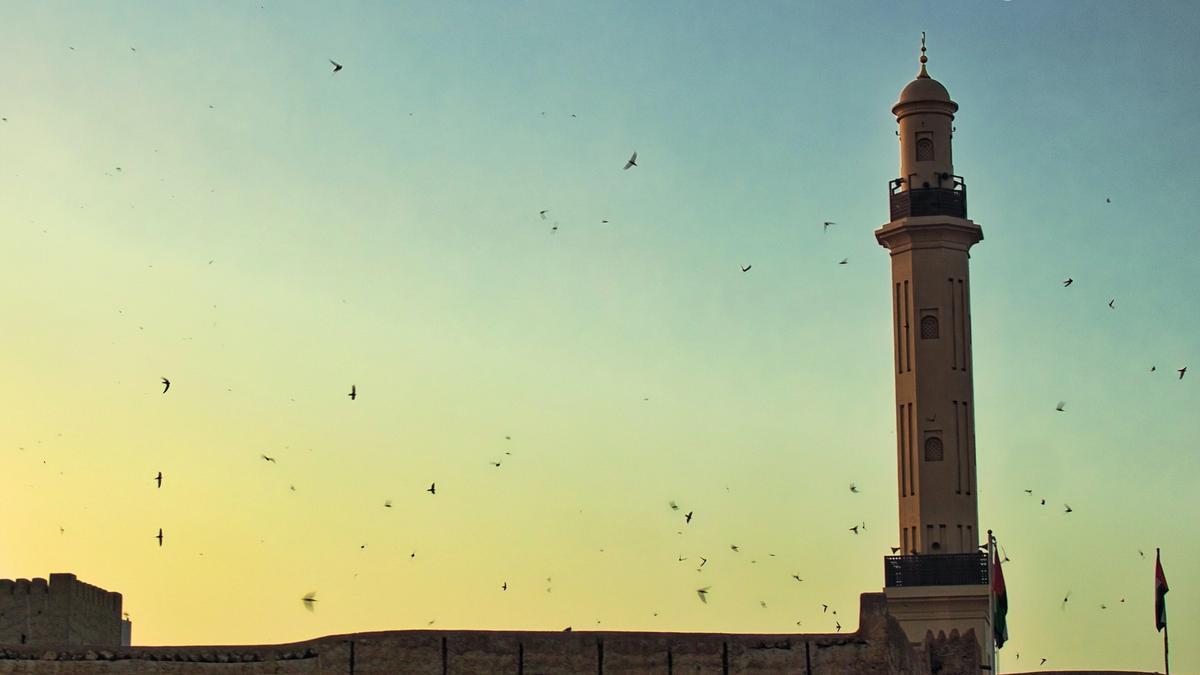 Bygning med flyvende fugler rundt