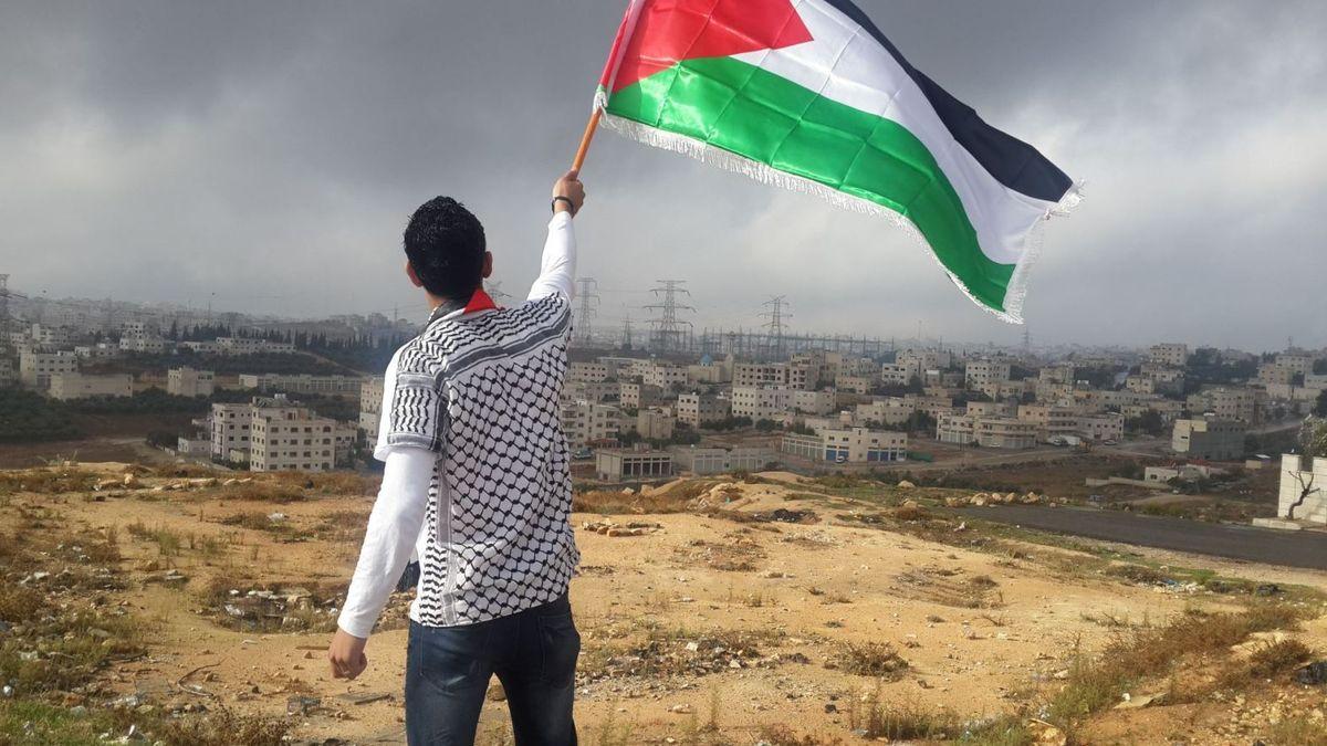 Person med Palestina-flagg