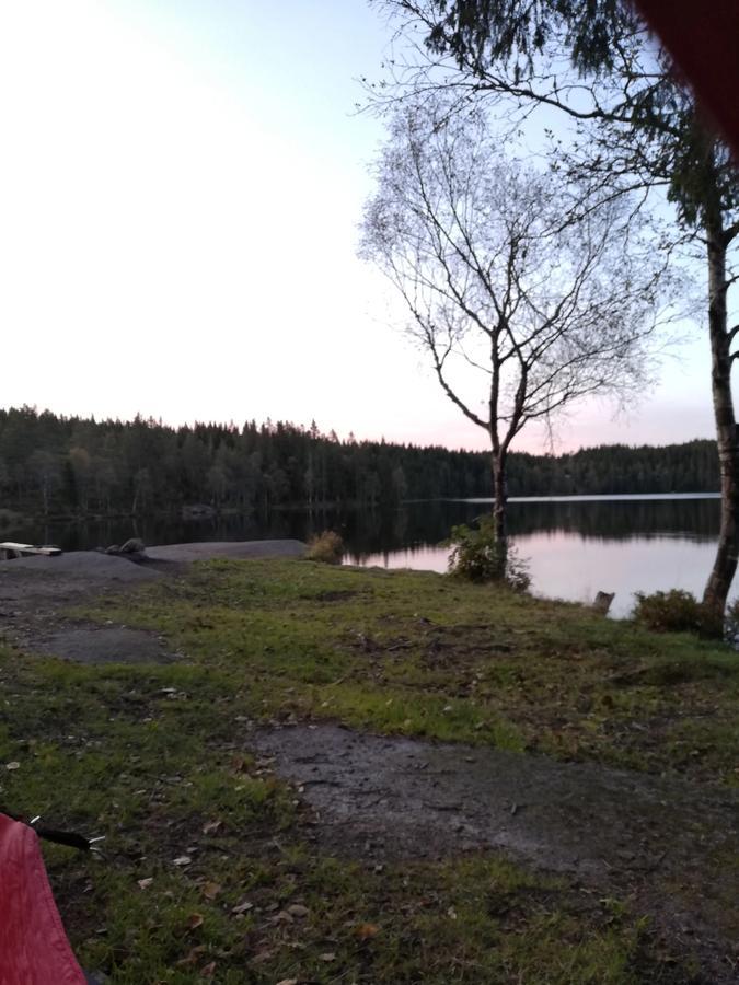 Utsikt fra teltet. Foto Privat