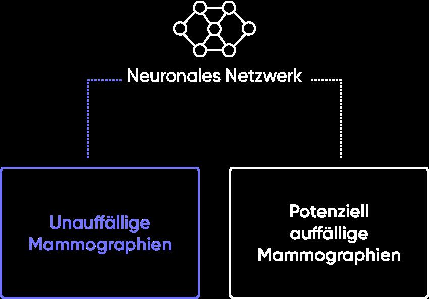Smart Classification image