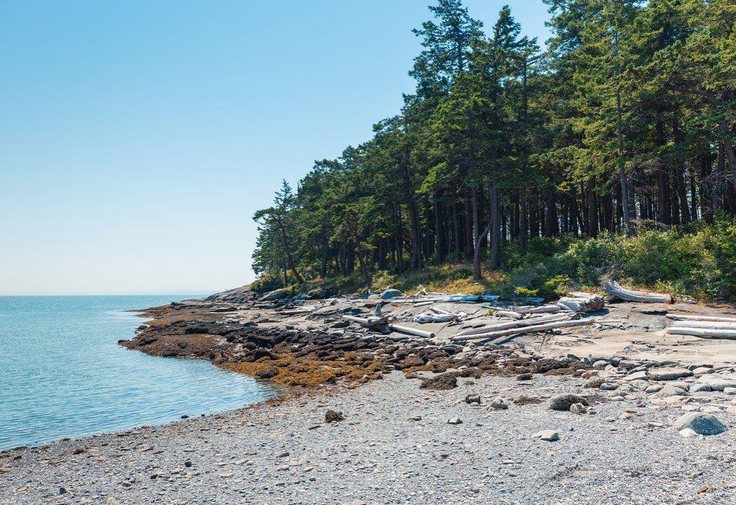 Salish Sea marine habitat