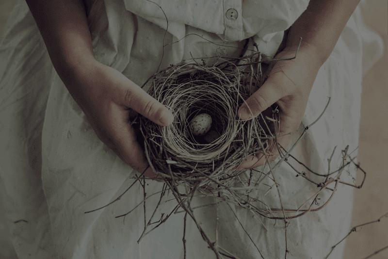 Girl holding nest – A Sacred Nest Midwifery & Wellness – Tyler, TX