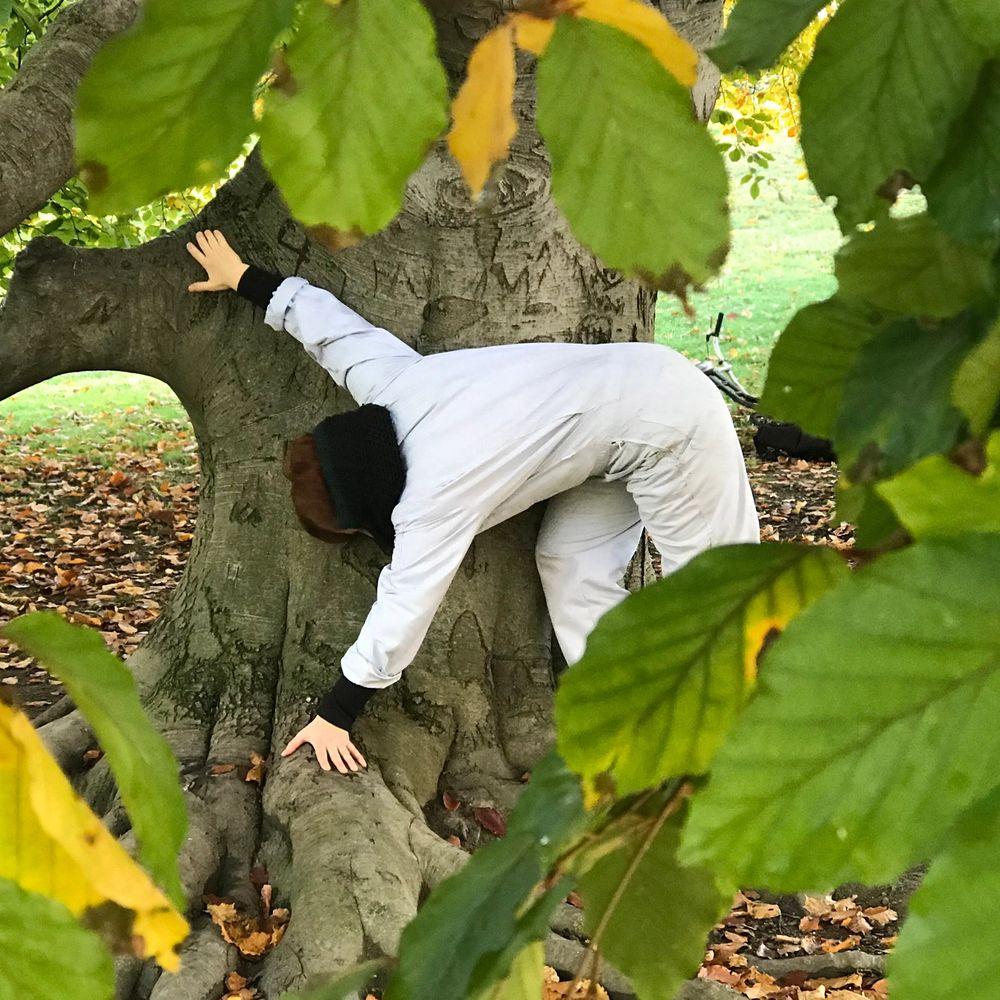 Tree Talks