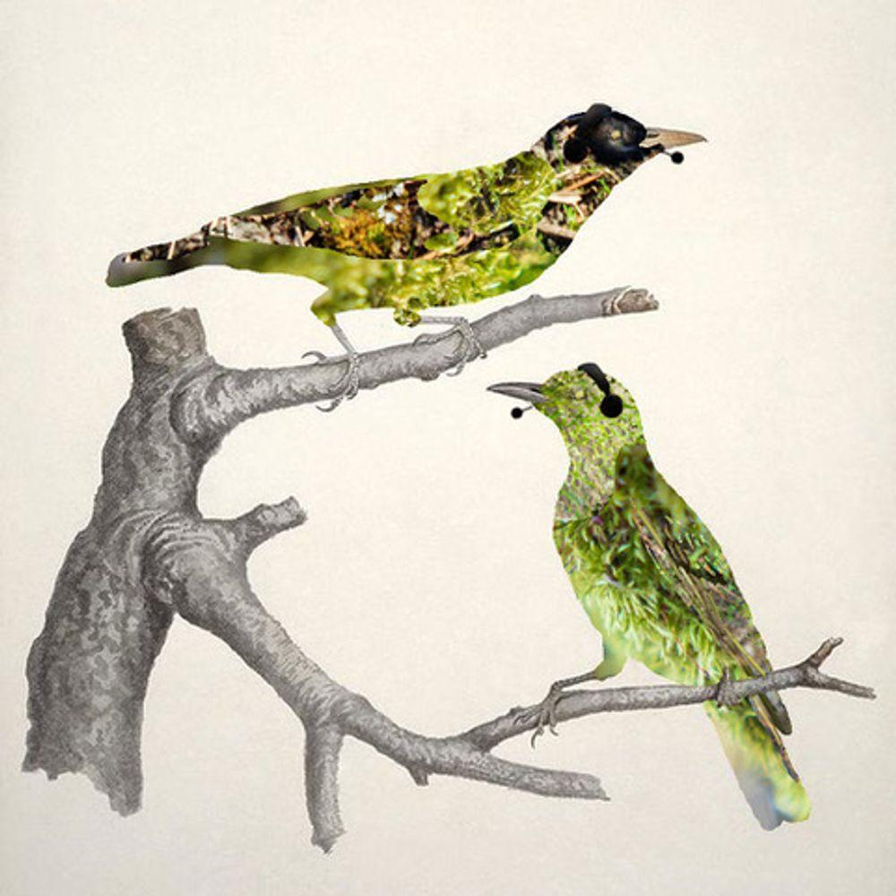 Two green birds wearing headsets