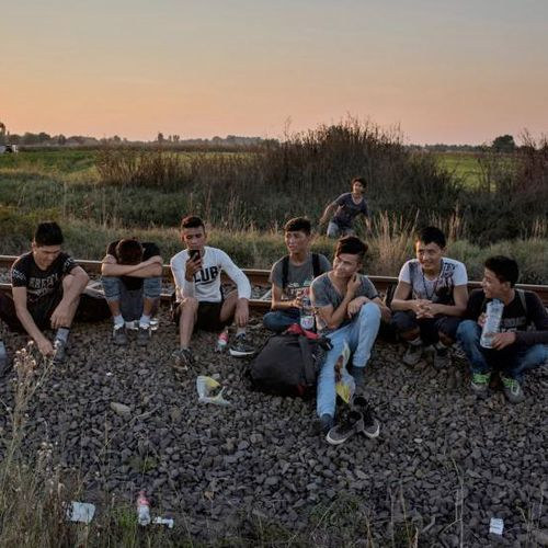 Hvem er Dansk Selskab for Indvandrersundhed?