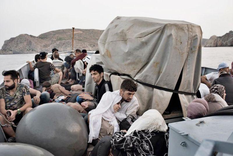 Pressemeddelelse fra Dansk Selskab for Indvandrersundhed