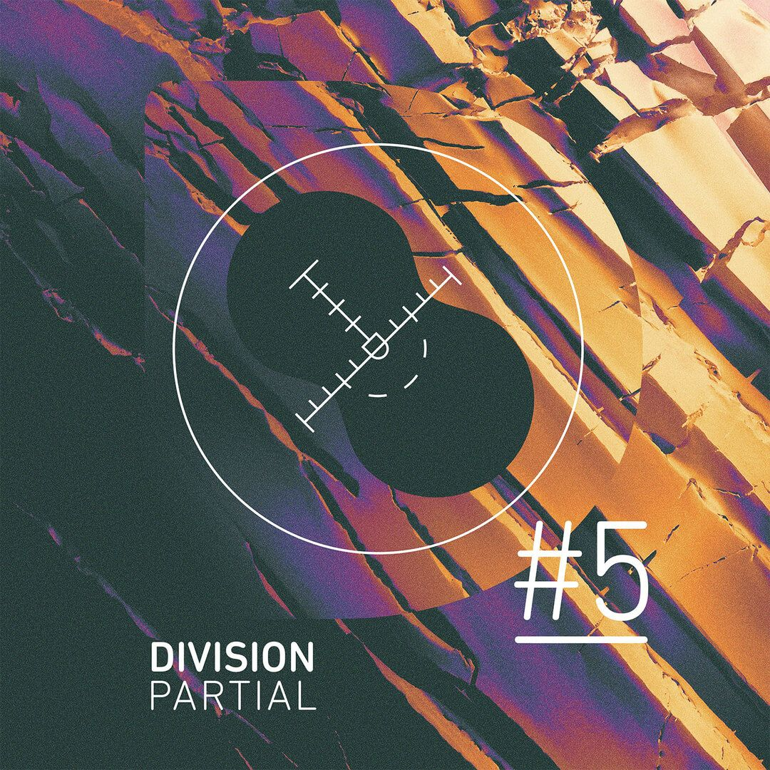 Let's look at Division Partials #5