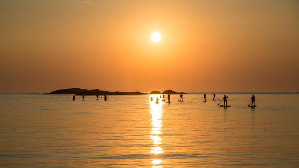 SUP i solnedgang med gruppe på firmatur