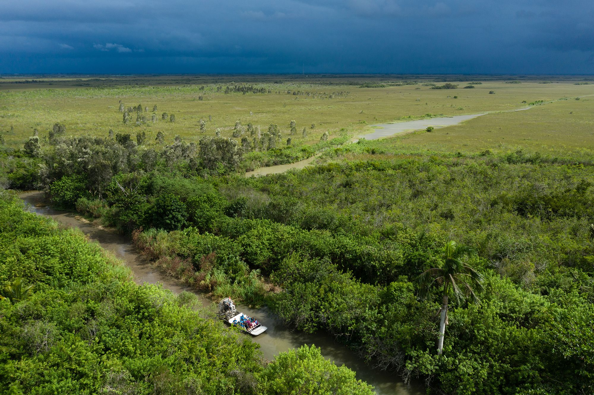 An aerial view of an air boat full of students crossing wetlands in the Everglades.