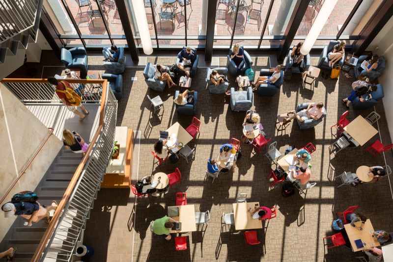Students studying in the Bush Science Center atrium.