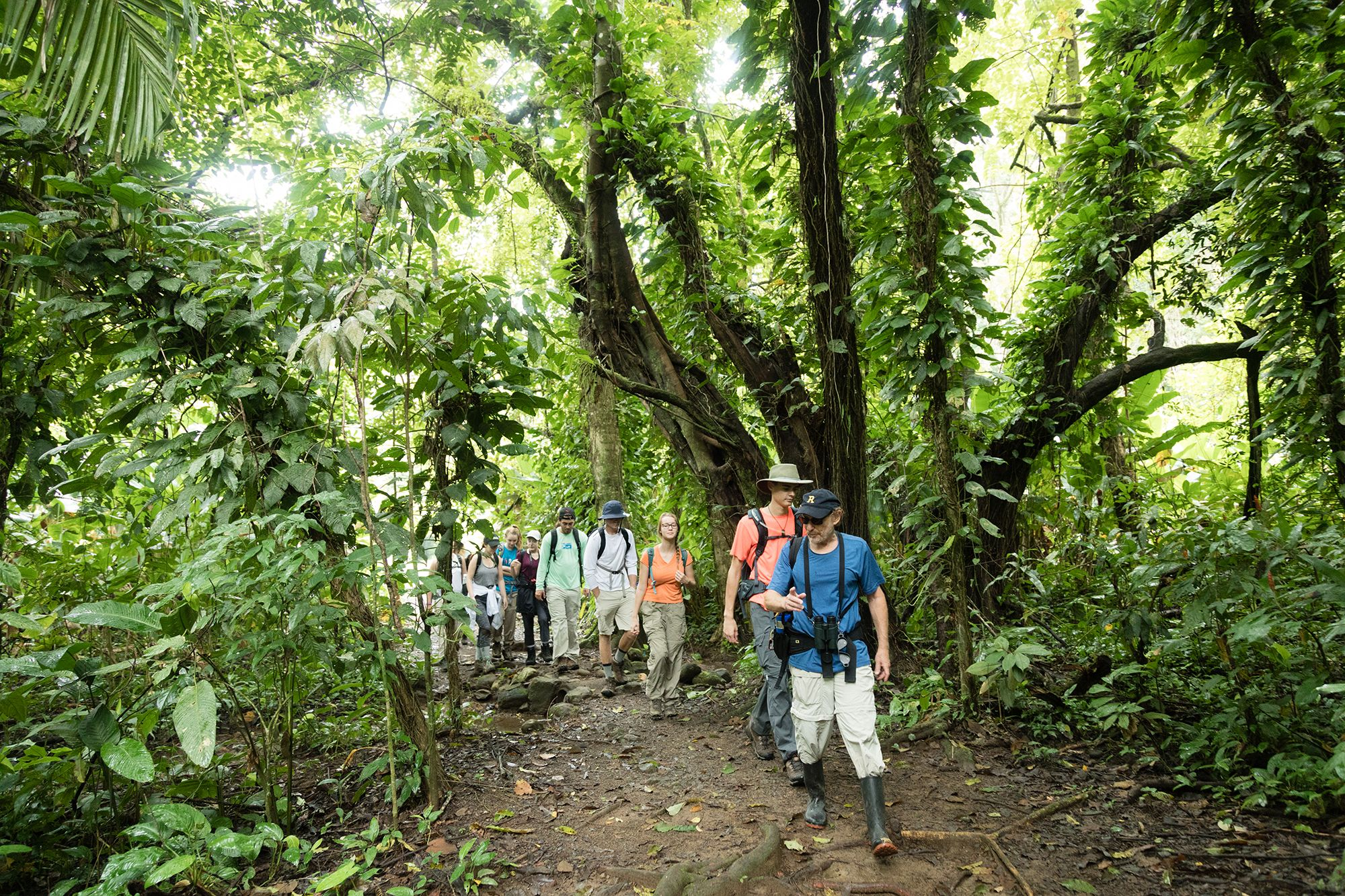 Environmental studies professor Barry Allen leading students through a Costa Rican rainforest.