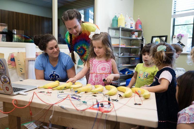 Developmental Psychology with Lab