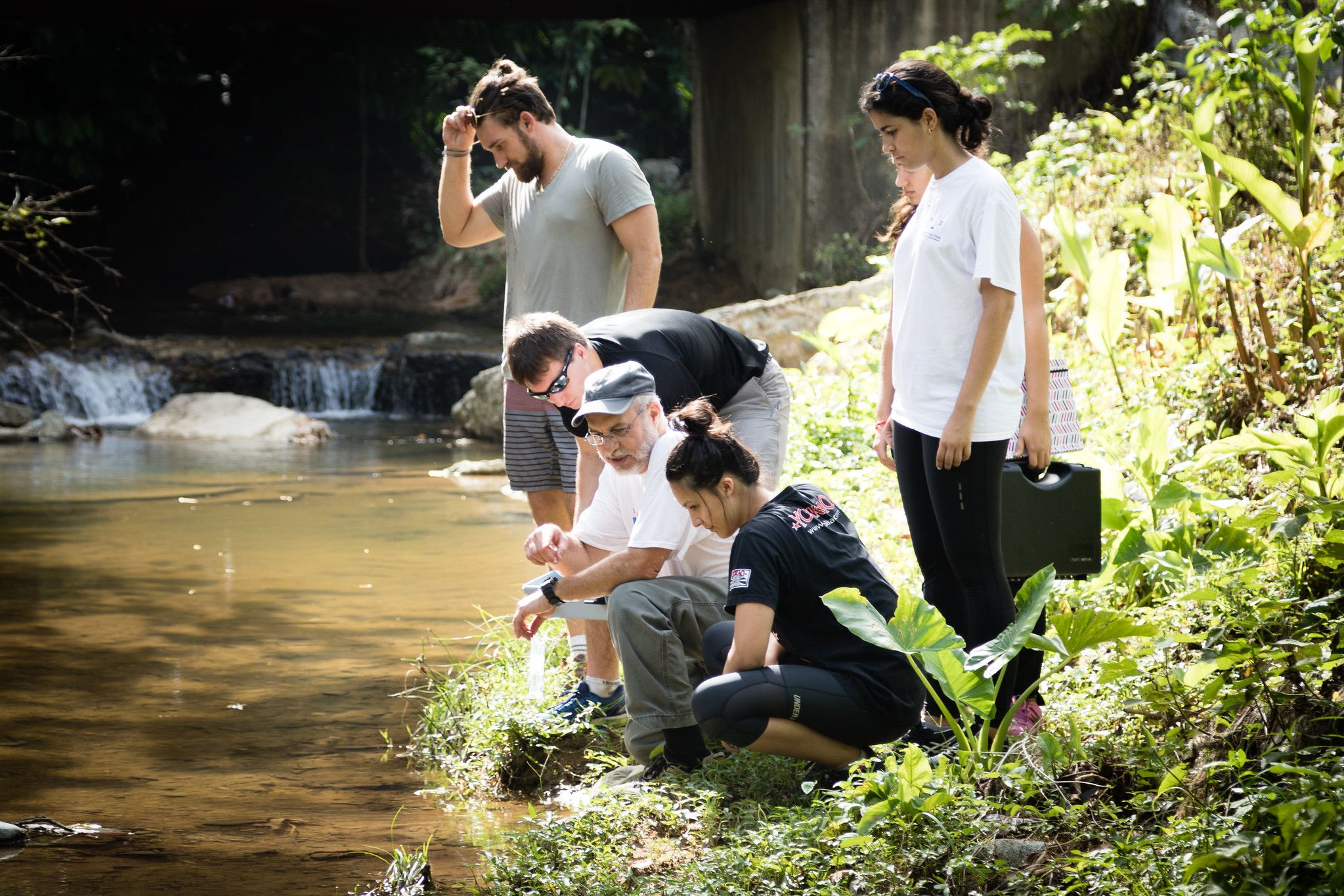 Chemistry professor Pedro Bernal and his students examine a shallow creek in the Dominican Republic.