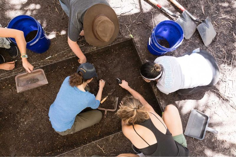 Students working in a garden.