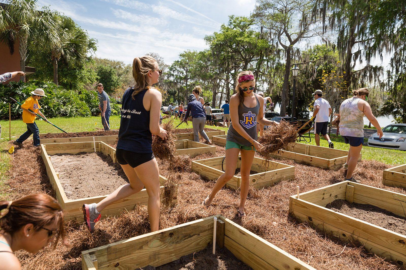 Rollins students tending the garden outside Elizabeth hall.