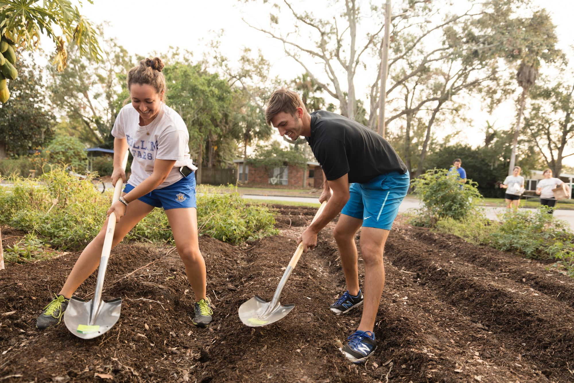Students prepare soil in residential lawns for planting of urban micro-farms.