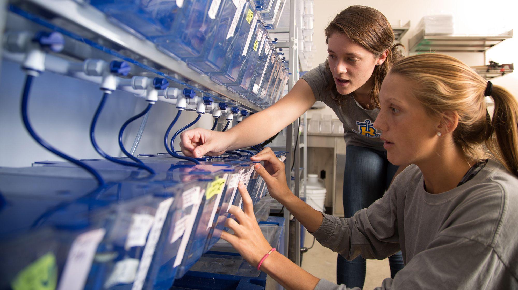 A couple of students checking on research in the marine biology lab.
