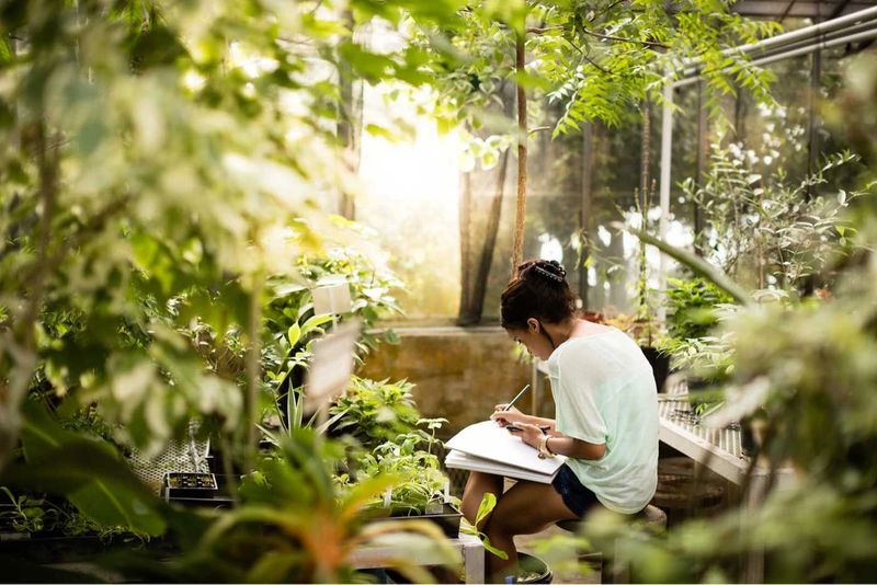 A student taking notes in a greenhouse.